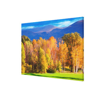 Landscape in Vermont Canvas Print