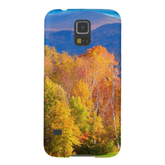 Landscape in Vermont Case For Galaxy S5