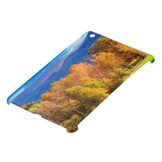 Landscape in Vermont Cover For The iPad Mini