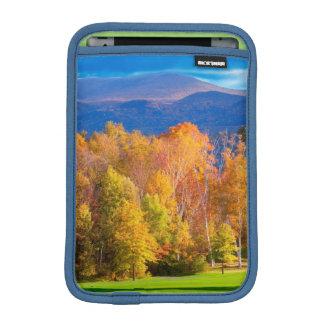 Landscape in Vermont iPad Mini Sleeve