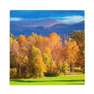 Landscape in Vermont Wood Coaster