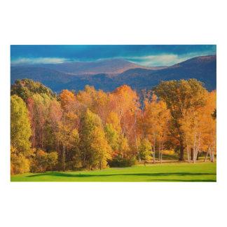 Landscape in Vermont Wood Print