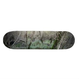 Landscape nature and cork oaks in Doñana, Spain Skateboard Decks