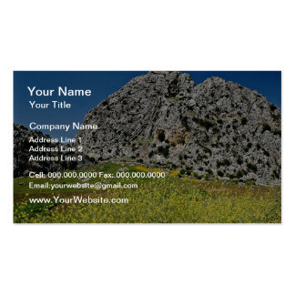 Landscape near Ronda, Andalucia, Spain  flowers Pack Of Standard Business Cards