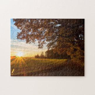 Landscape oak forest with sunset autumn jigsaw puzzle