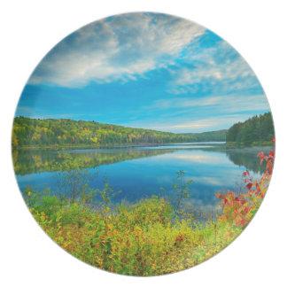 Landscape of Costello Lake Plate