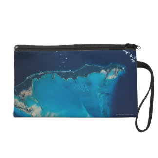 Landscape of Earth from Space 2 Wristlet