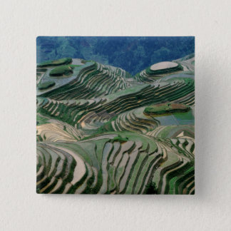 Landscape of rice terraces in the mountain, 15 cm square badge