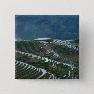 Landscape of rice terraces in the mountain, 2 15 cm square badge