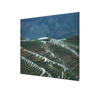 Landscape of rice terraces in the mountain, 2 canvas print
