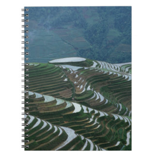 Landscape of rice terraces in the mountain, 2 notebooks