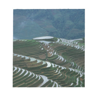 Landscape of rice terraces in the mountain, 2 notepad