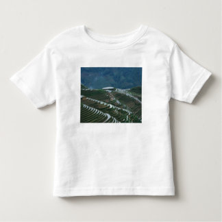 Landscape of rice terraces in the mountain, 2 toddler T-Shirt
