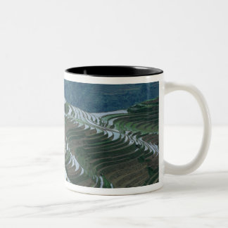 Landscape of rice terraces in the mountain, 2 Two-Tone coffee mug
