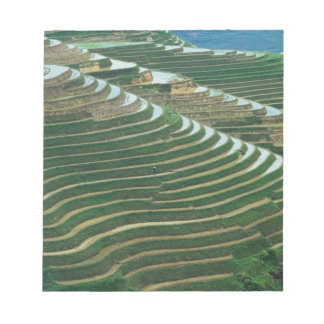 Landscape of rice terraces in the mountain, 3 notepad