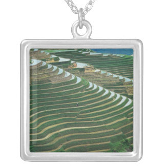Landscape of rice terraces in the mountain, 3 silver plated necklace