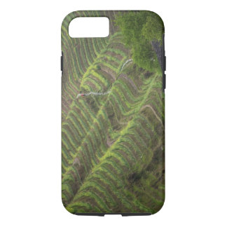 Landscape of rice terraces in the mountain, iPhone 8/7 case