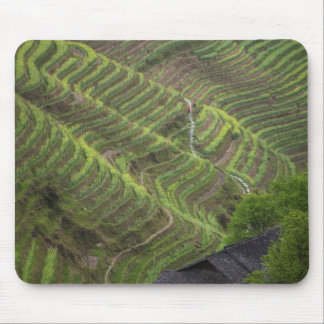 Landscape of rice terraces in the mountain, mouse mat
