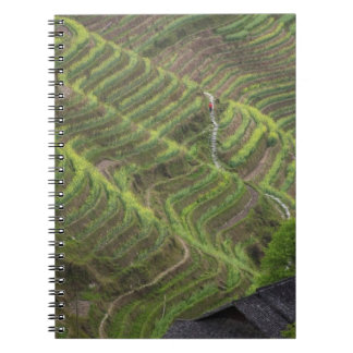 Landscape of rice terraces in the mountain, notebook