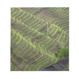 Landscape of rice terraces in the mountain, notepad