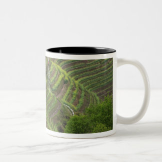 Landscape of rice terraces in the mountain, Two-Tone coffee mug