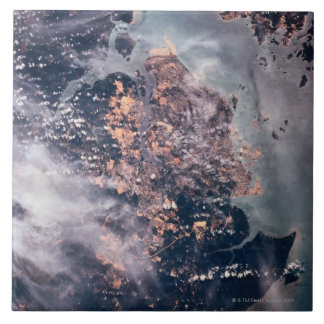 Landscape of the Earth 2 Tile