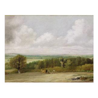 Landscape: Ploughing Scene in Suffolk (A Summerlan Postcard