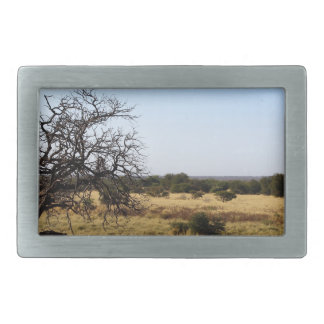 Landscape Rectangular Belt Buckles