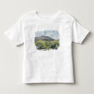 Landscape, Snowdon Toddler T-Shirt