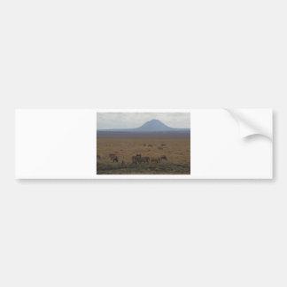 Landscape Tanzania  Tom Wurl Bumper Sticker