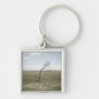 Landscape, Texas, USA Silver-Colored Square Key Ring