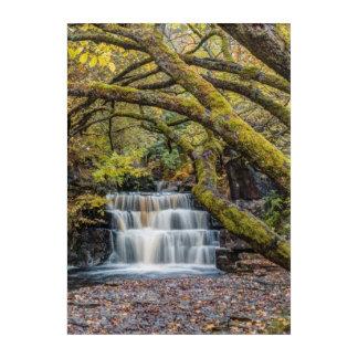 Landscape Waterfall Acrylic Wall Art