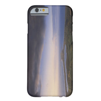 landscape with an overcast sky barely there iPhone 6 case