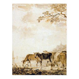 Landscape with cows by Jacob van Strij Postcard