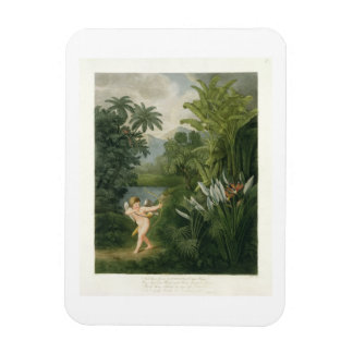 Landscape with Cupid aiming an arrow at a Parrot o Rectangular Magnet