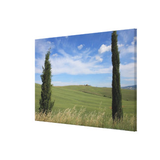 Landscape with Cypresses 2 Gallery Wrap Canvas