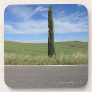 Landscape with Cypresses Coaster