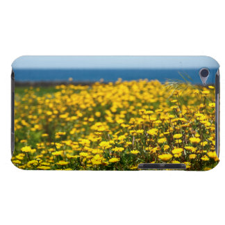 Landscape with daisies barely there iPod case