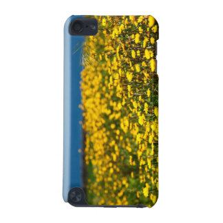 Landscape with daisies iPod touch 5G covers