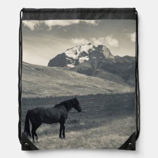 Landscape with horses 2 backpack