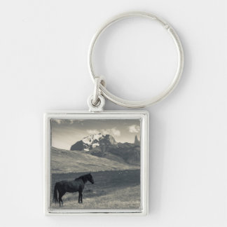 Landscape with horses 2 Silver-Colored square key ring