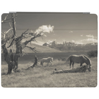 Landscape with horses iPad cover