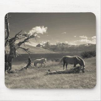 Landscape with horses mouse mat