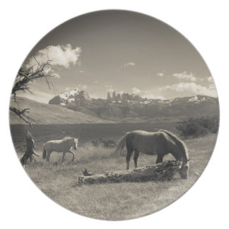 Landscape with horses plate