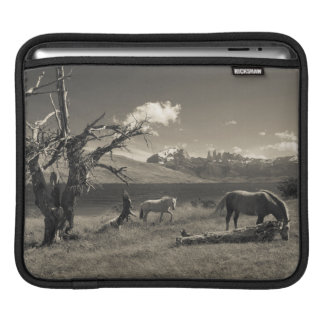 Landscape with horses sleeves for iPads
