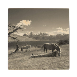 Landscape with horses wood coaster