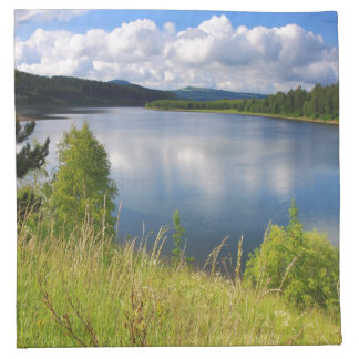 Landscape with lake napkin