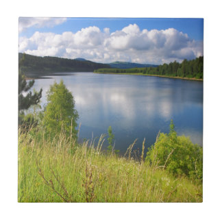 Landscape with lake tile