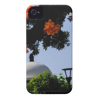Landscape with orange orchids iPhone 4 Case-Mate cases