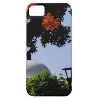 Landscape with orange orchids iPhone 5 cases